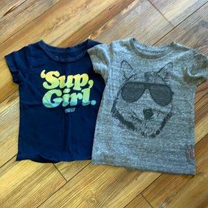 Prefresh Boys size 2t T-shirt lot